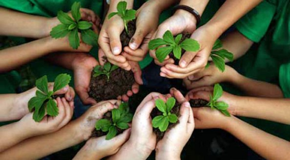 Environmental education has its challenges, but young people need nature –  Guest Blog – James Common