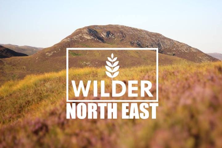 A Vison for a#WilderNE