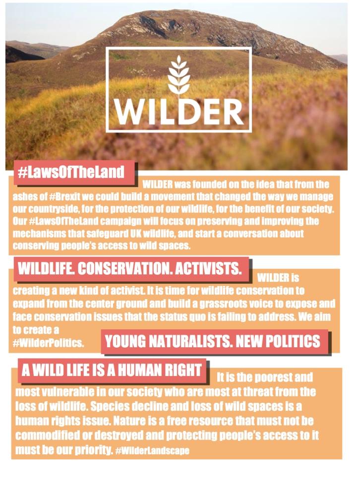 #LawsOfTheLand Campaign Manifesto Page 3