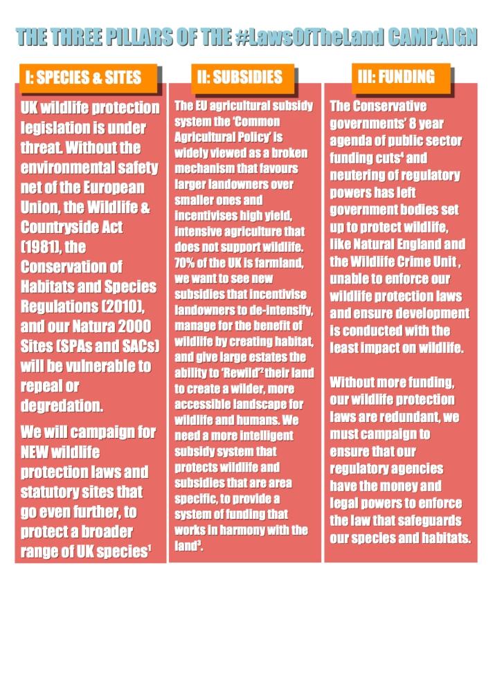 #LawsOfTheLand Campaign Manifesto Page 4