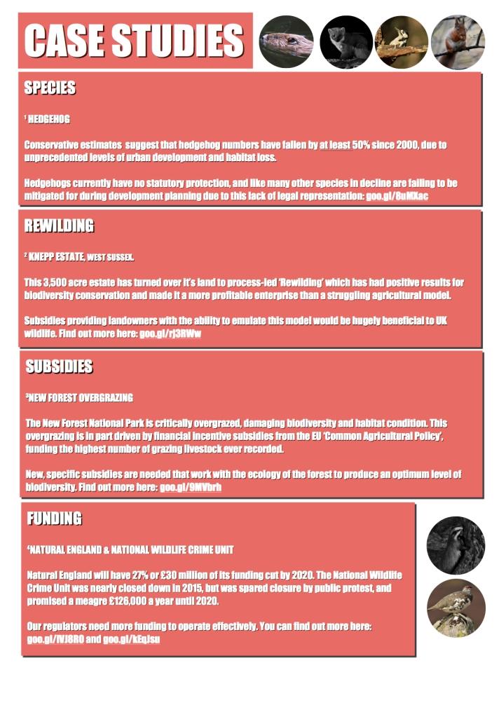 #LawsOfTheLand Campaign Manifesto Page 5