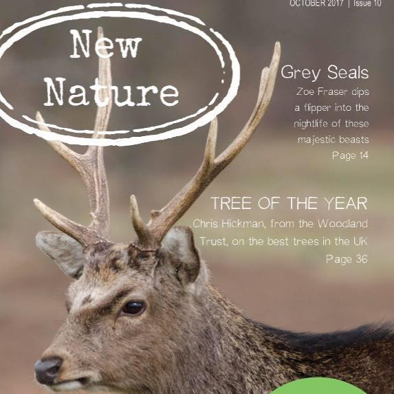 New Nature issue10!