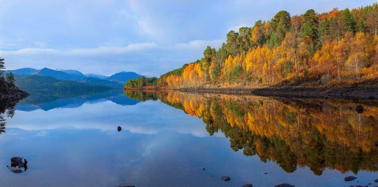 Glen Affric © Grant Willoughby