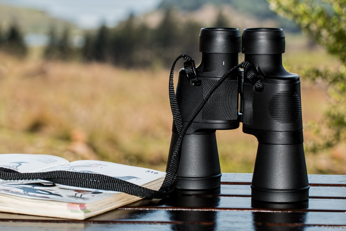 Hunting and Optics: should I feel guilty for where I shop?