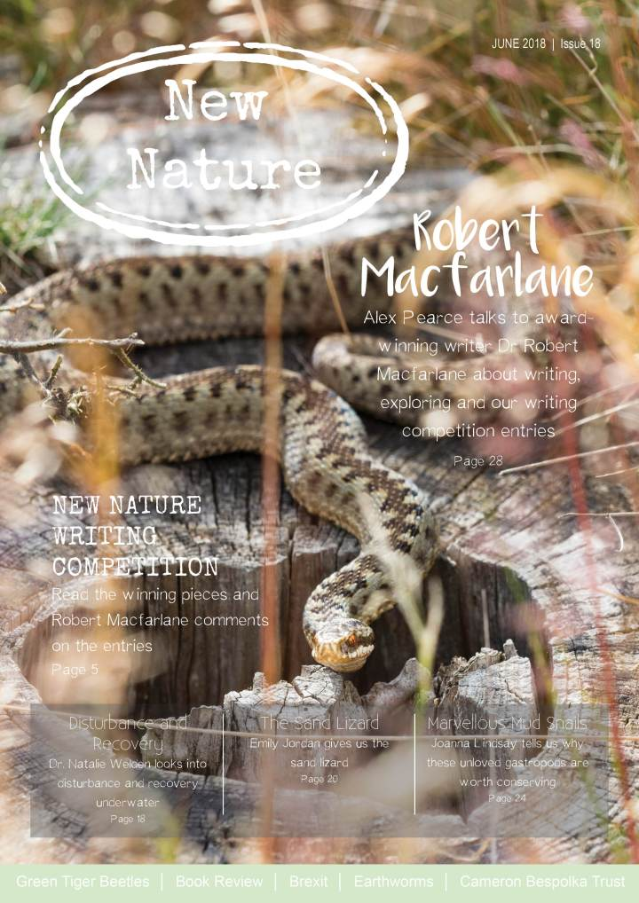 New Nature: Issue 18