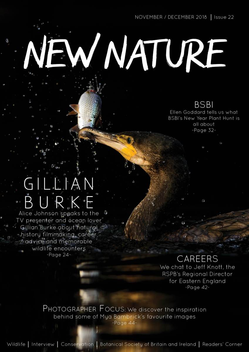 The latest New Nature Magazine is out!